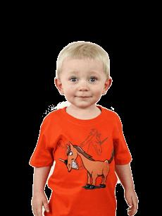 Dětské tričko Jednorožec