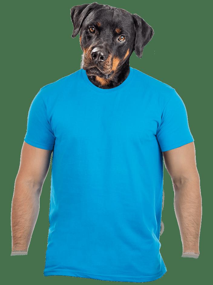 Pánske tričko tyrkysové