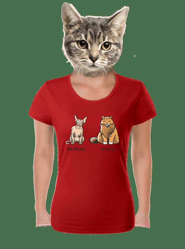 Mačka pred výplatou dámske tričko