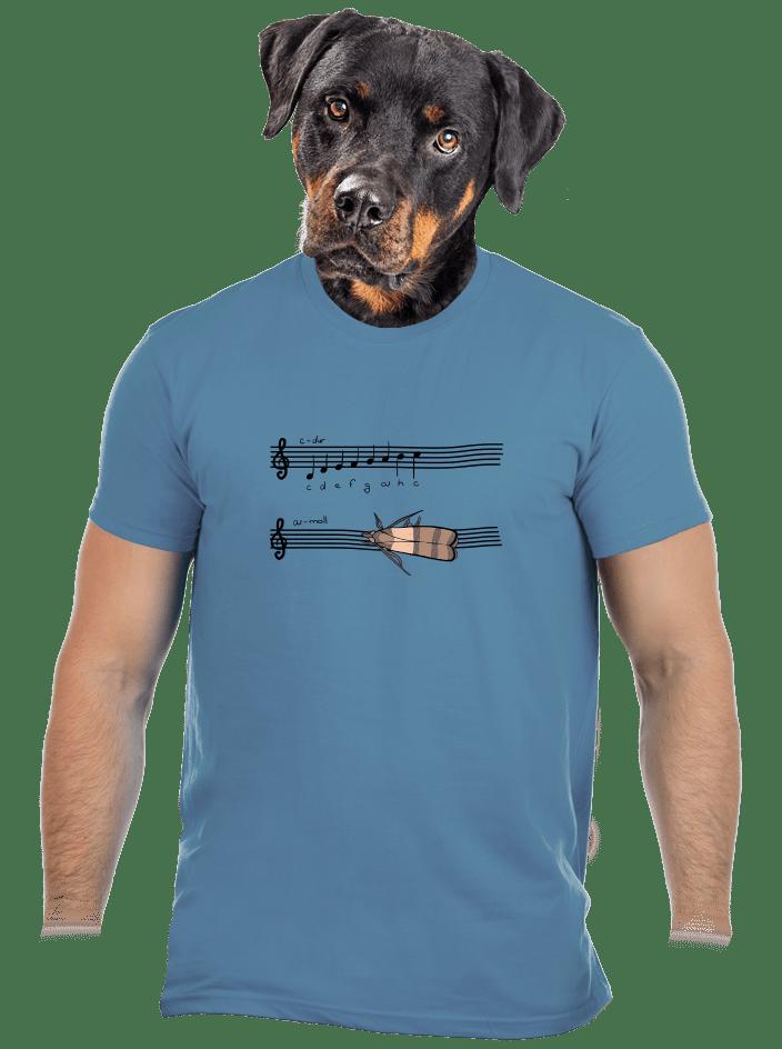 A - moll pánske tričko