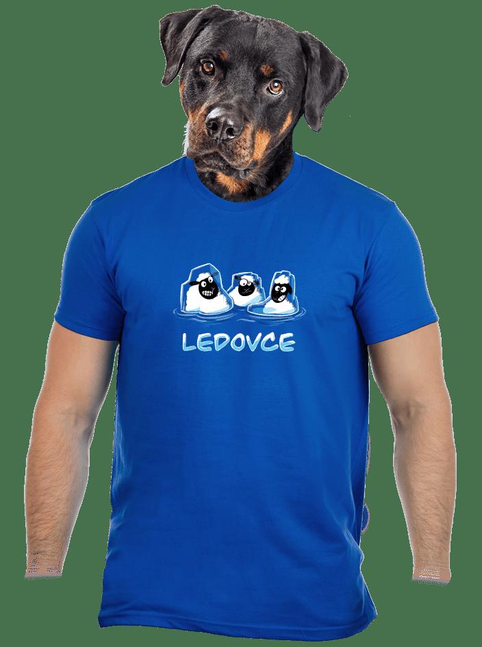 Ledovce pánske tričko